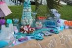 Frozen Birthday Party 2014