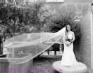 Beautiful bride - 2014